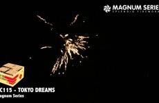 VC115 – Magnum Series – Tokyo Dreams