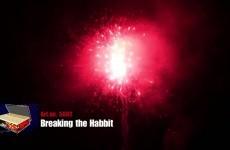 5002   Breaking the Habbit 183sh   CAT2