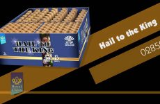 02859 Hail to the King – Royal Class – Lesli Vuurwerk